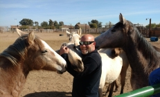 Matt with yearlings pic