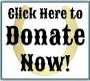 Donate Button (3)